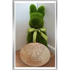 Easter Bunny Poop Plate